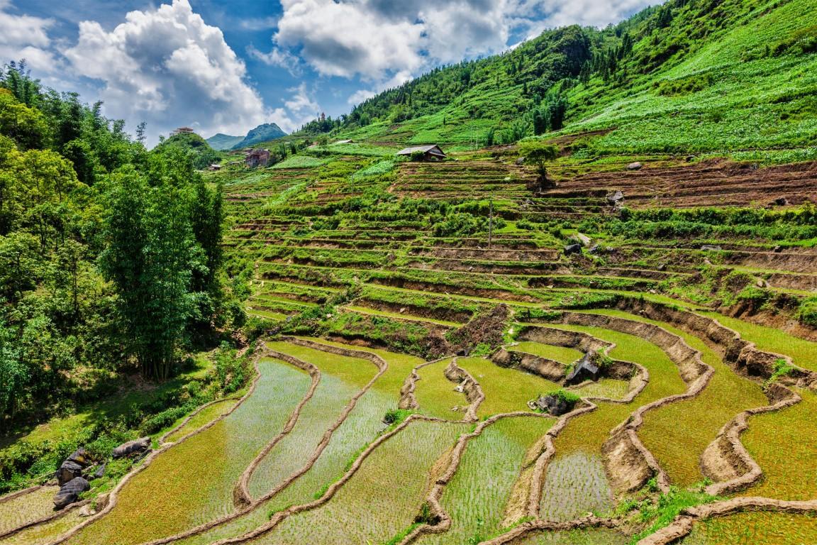 expatrier-vietnam